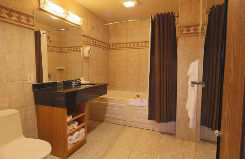 Guest bathroom at Kalahari Waterpark Resort Convention Center.