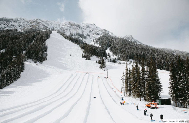 Skiing near Banff Caribou Lodge & Spa.