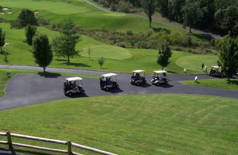 Golf carts at Thousand Hills Golf Resort.