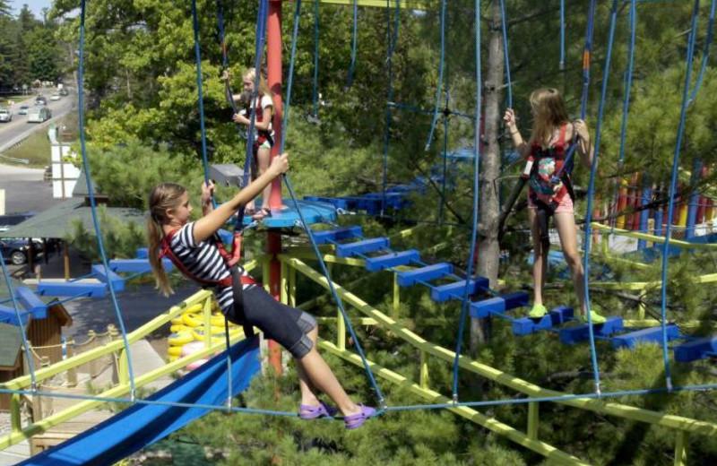 Adventure ropes at Big Bear Adventures.