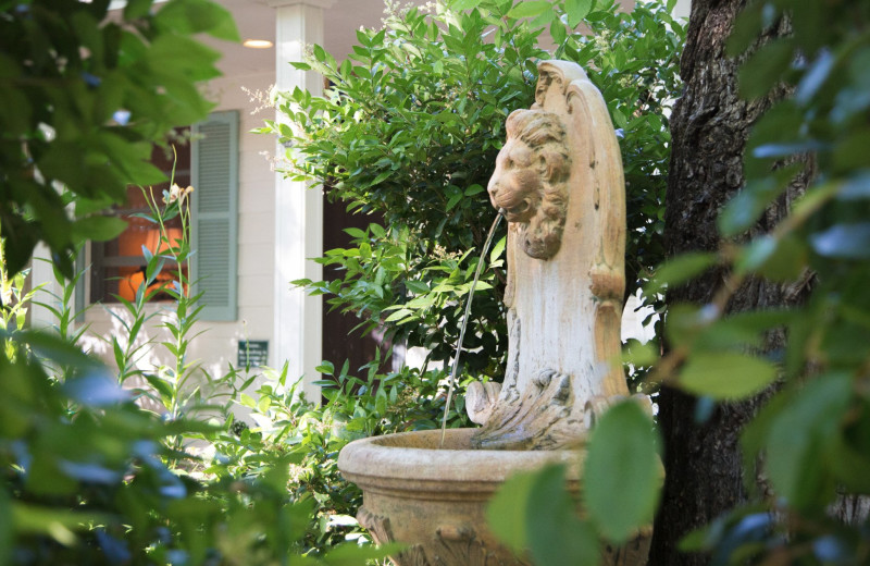 Garden at Cottage Grove Inn.