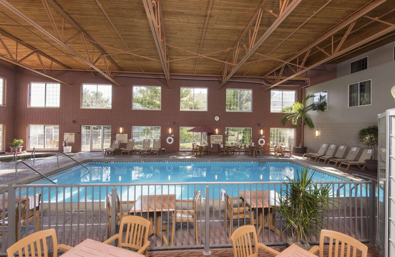 Indoor pool at Hampton Inn Holland.