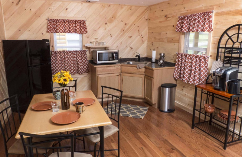 Cabin kitchen at Catskill Mountains Resort.