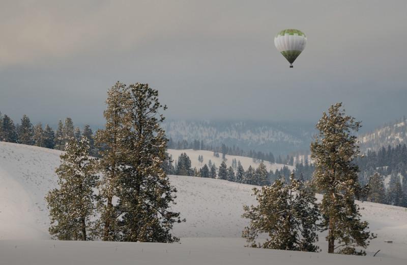 Air balloon at The Green O.