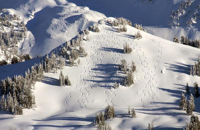Ski hill at Fireside Resort at Jackson Hole.