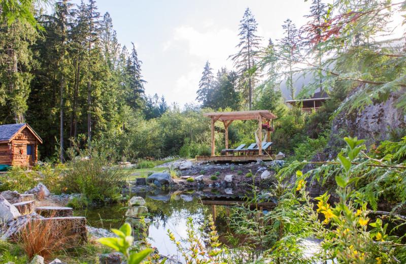 Garden at Wilderness Resort & Retreat.