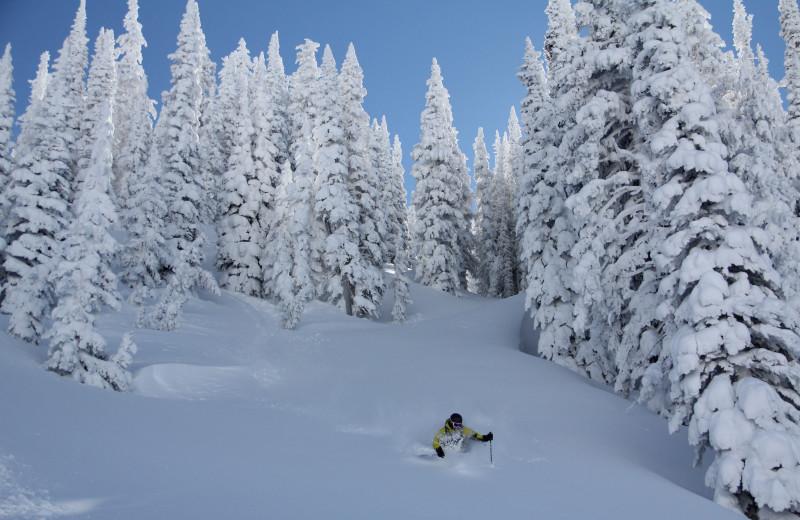 Skiing at Bella Vista Estate.