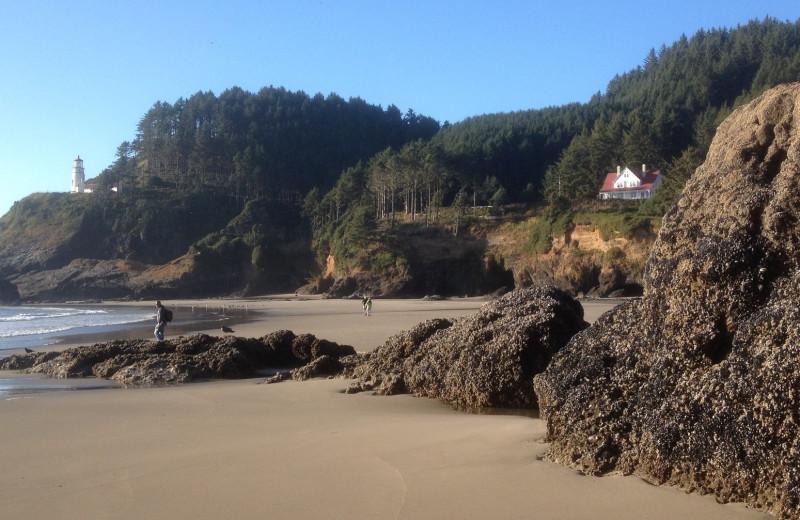 Beach at Old Town Inn.