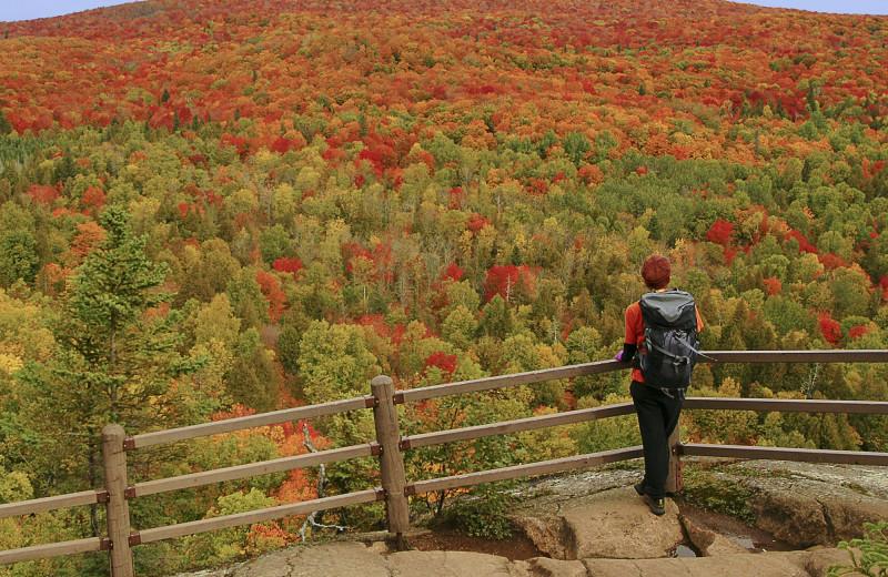 Fall colors at Lutsen Resort on Lake Superior.