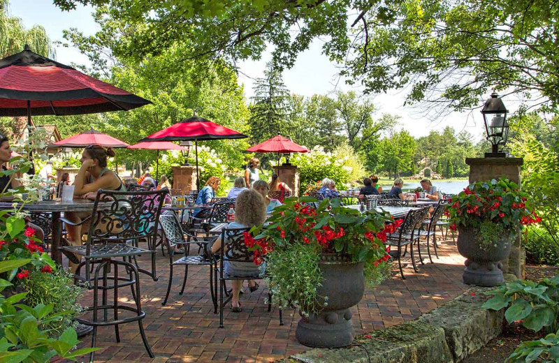 Patio dining at Gervasi Vineyard.