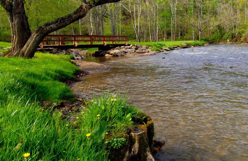 Creek view at Creekside Resort.