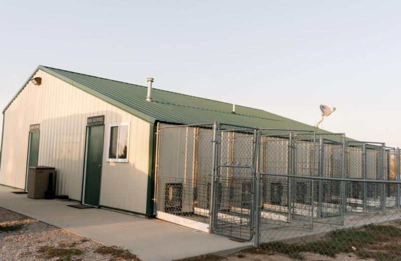 Dog kennels at Granite Springs Lodge.