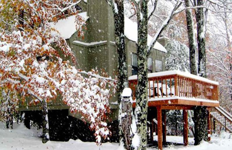 Vacation rental exterior at Black Bear Resort.