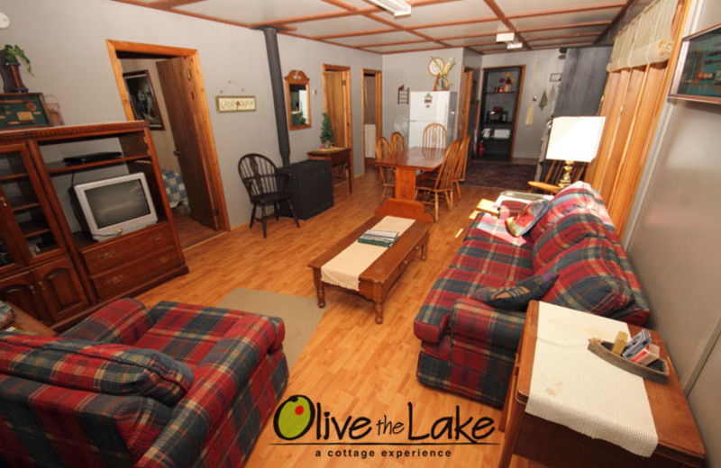 Cabin living room at Olive the Lake.