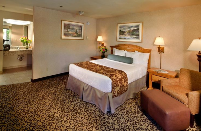 Guest Room at Best Western Plus Inn at the Vines