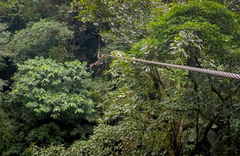 Zip line near El Castillo Boutique Luxury Hotel.