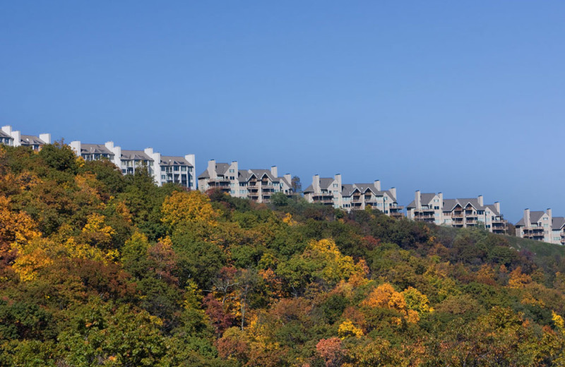 Condos at Wintergreen Resort.