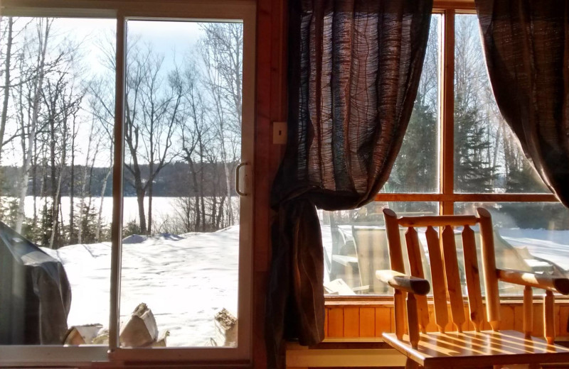 Cabin view at Dunlop Lake Lodge.