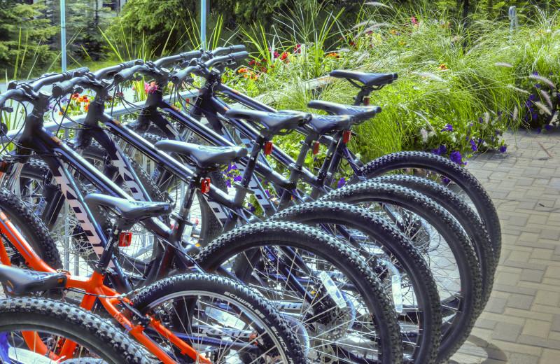 Bikes at Tunnel Mountain Resort