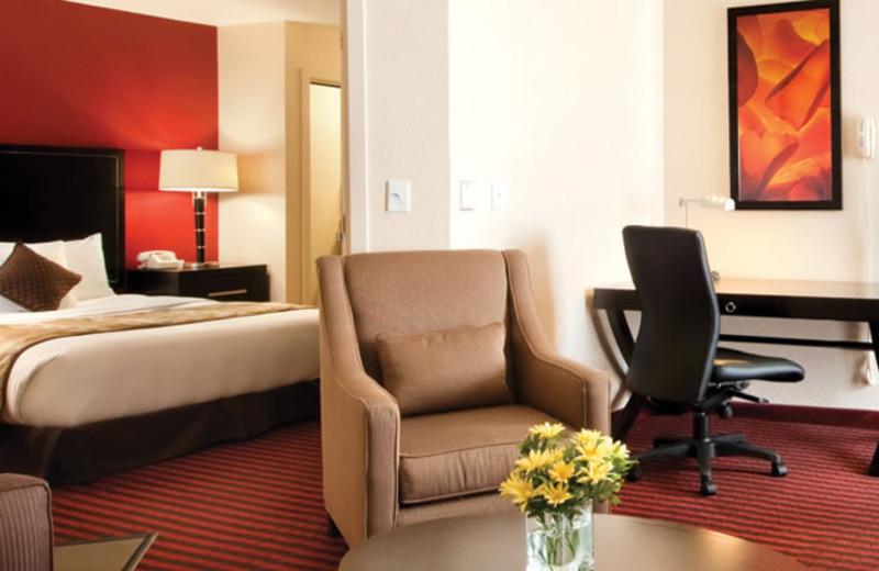 Guest room at Hyatt Summerfield Suites Dallas/Las Colinas.