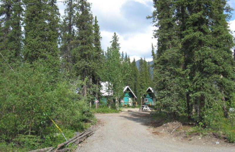 Cabins at Denali Perch Resort.