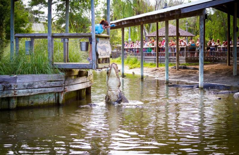 Park near Caribbean Resort & Villas.