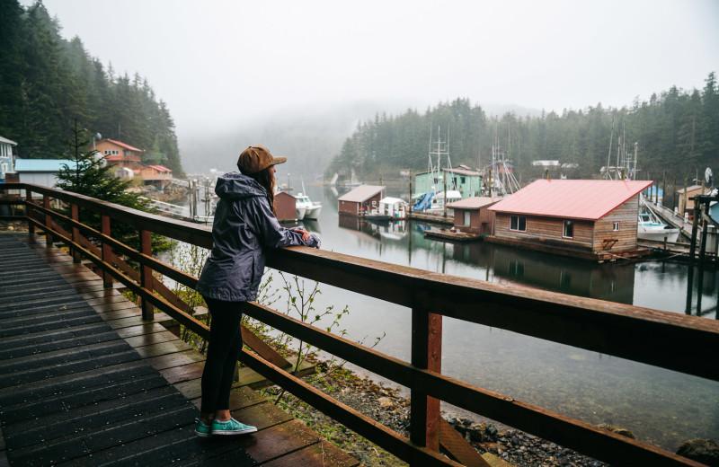 Dock at Elfin Cove Resort.