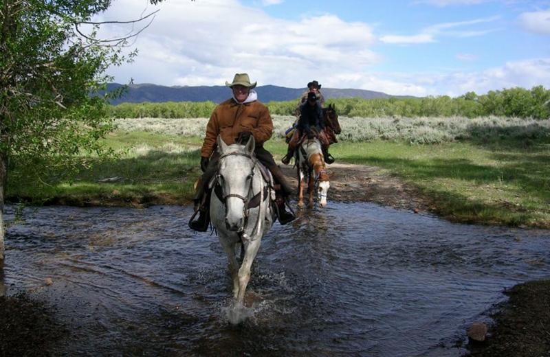 Horseback riding at Vee-Bar Guest Ranch.