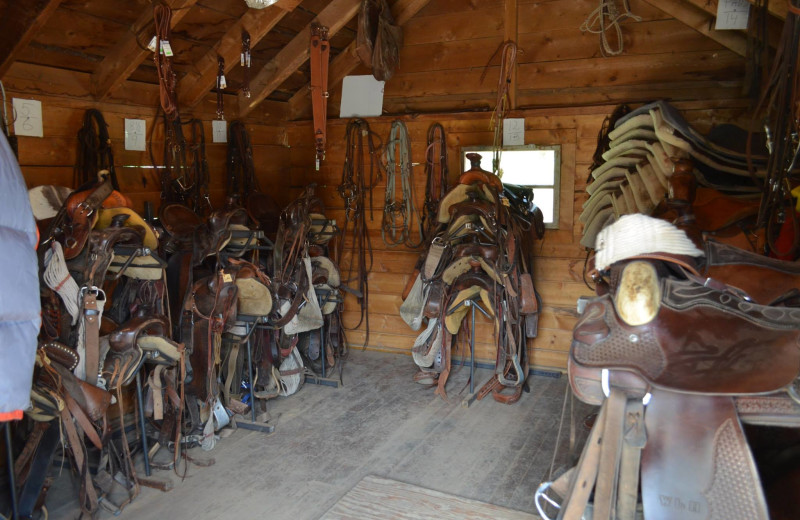 Horse saddles at Shoshone Lodge & Guest Ranch.
