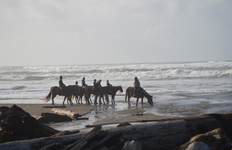 Horseback riding at Irish Beach Vacation Rentals.