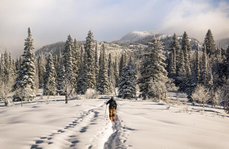Skiing at Mt. Baker Lodging.