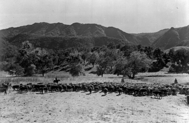 Historical photo of Alisal Guest Ranch and Resort.
