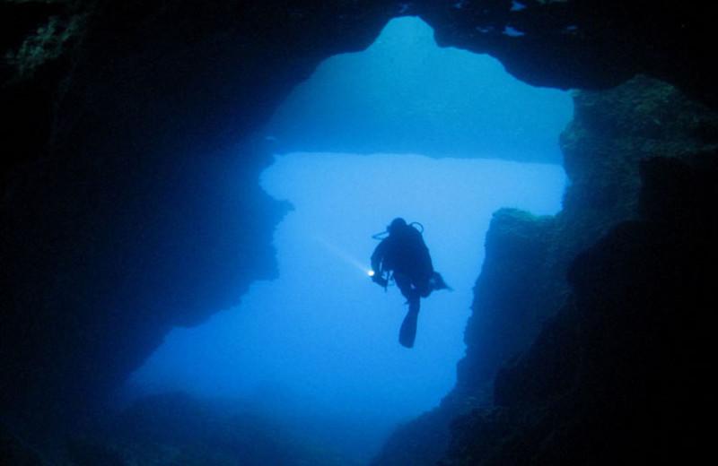 Scuba diving at Atlantis Hotel.