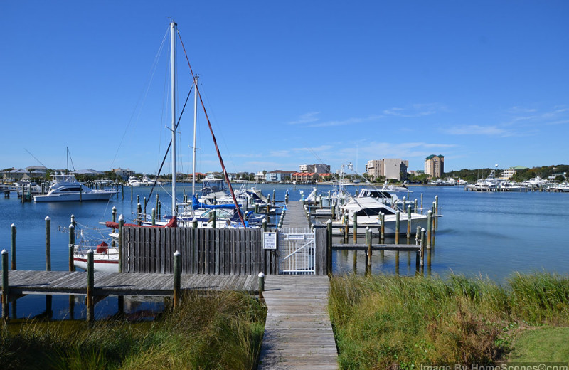 Marina at Sandpiper Cove.