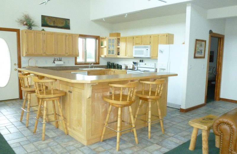 Cabin kitchen at Madison Management.