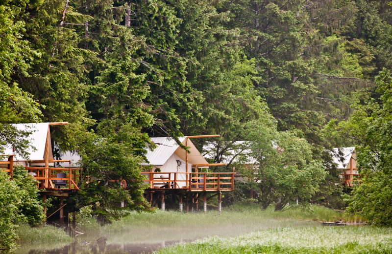Exterior view of Clayoquot Wilderness Resort.