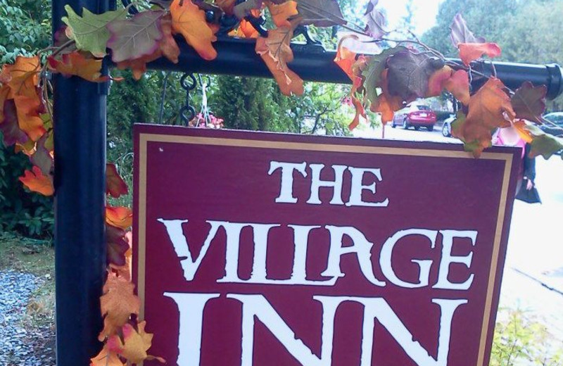 The Village Inn sign.
