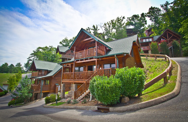Aunt Bug S Cabin Rentals Llc Pigeon Forge Tn Resort Reviews