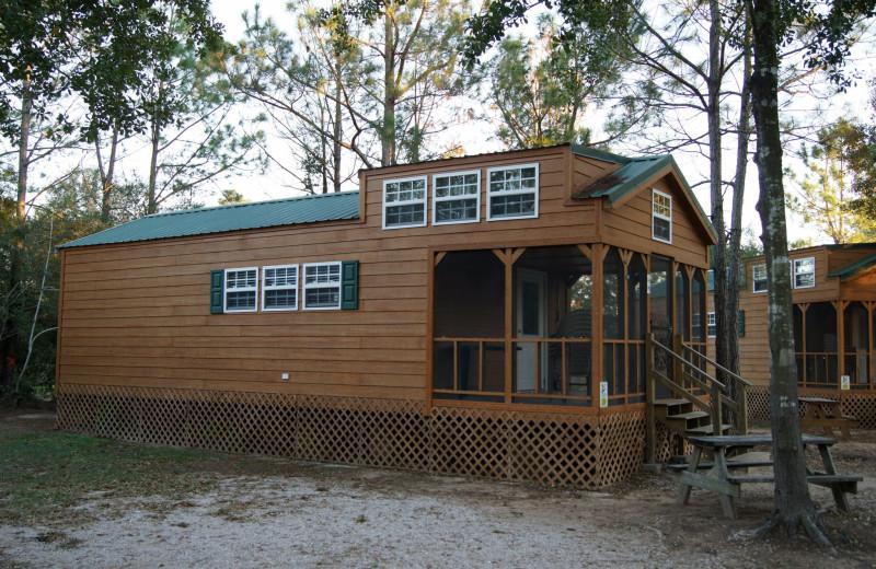 Cabin at Lone Star Jellystone.
