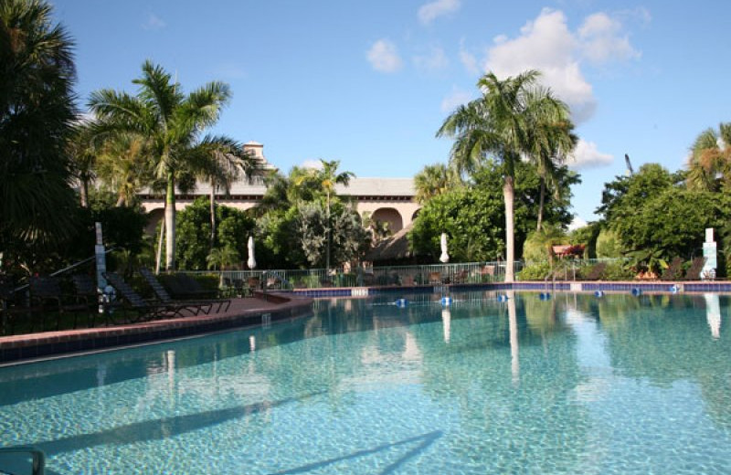 Outdoor pool at Port of the Islands Hotel & Resort.