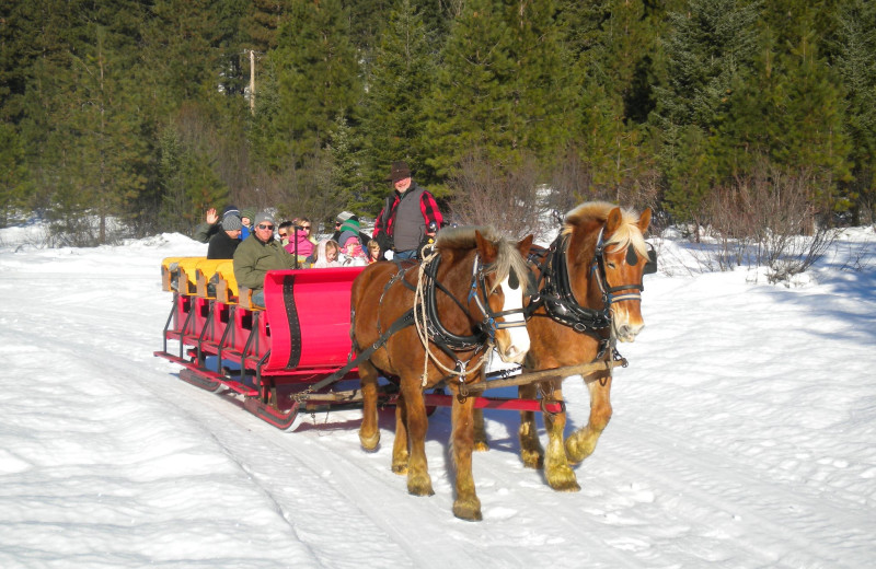 Sleigh ride at Mountain Springs Lodge.