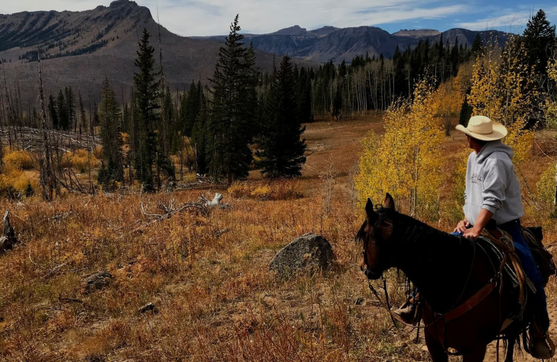 Horseback riding at Trappers Lake Lodge & Resort