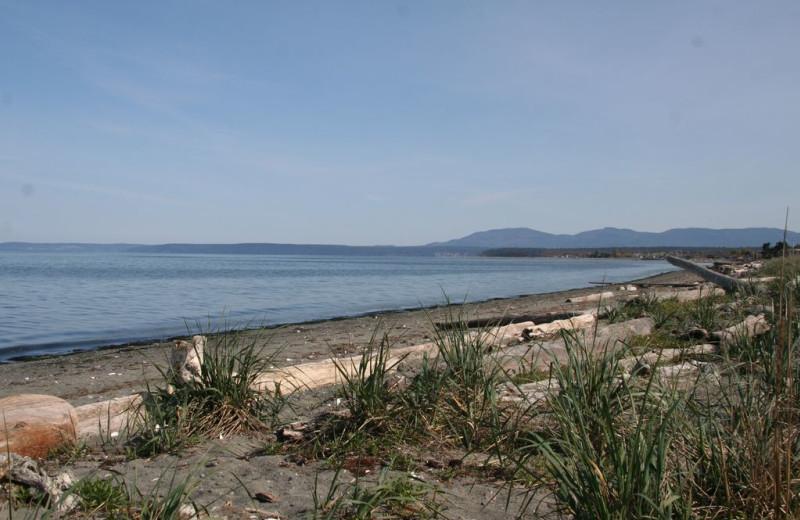 Beach view of Dungeness Beach Retreat.