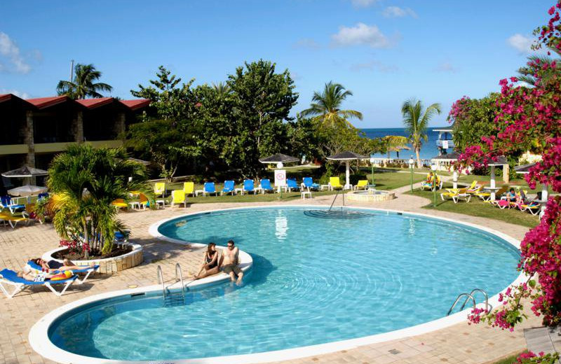 Outdoor pool at Rex Halcyon Cove.