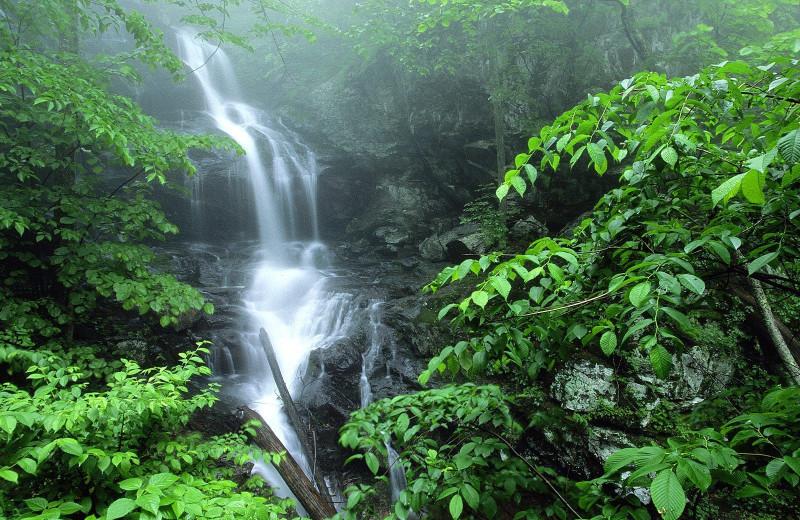 Lower Doyles River waterfall near Best Western PLUS Oceanfront Virginia Beach.