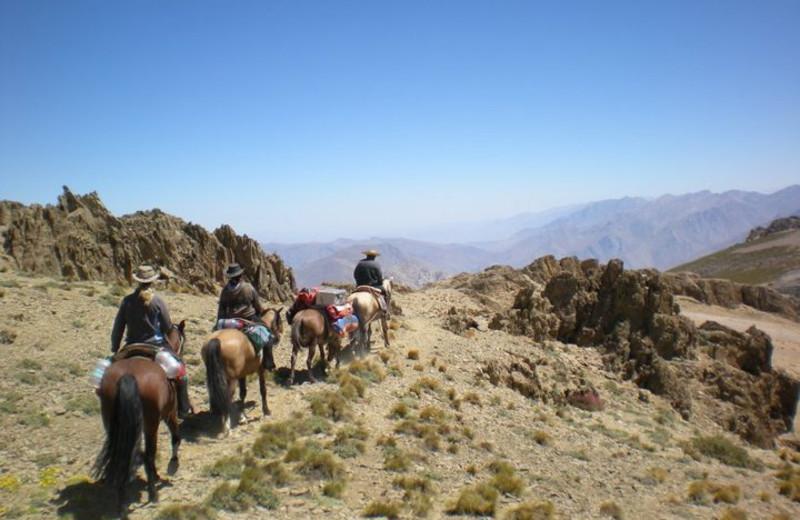 Horseback riding at Hacienda Los Andes.