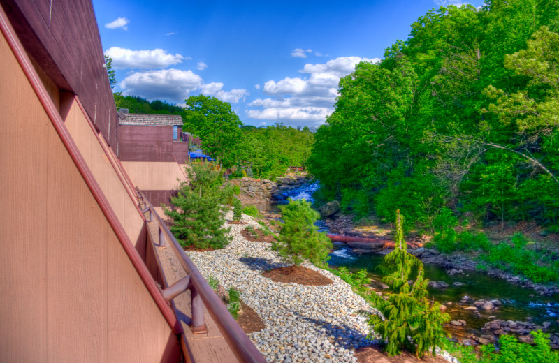 View of the Laurel Run Stream from a stream side room  from at Ascend Hotel Collection-The Woodlands.