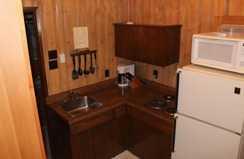 Cabin kitchen at Tallpine Lodges.