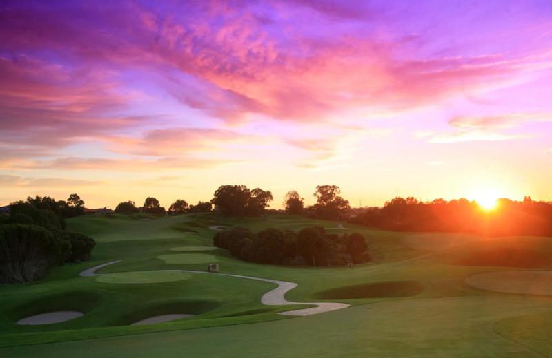 Golf course at Joondalup Resort.