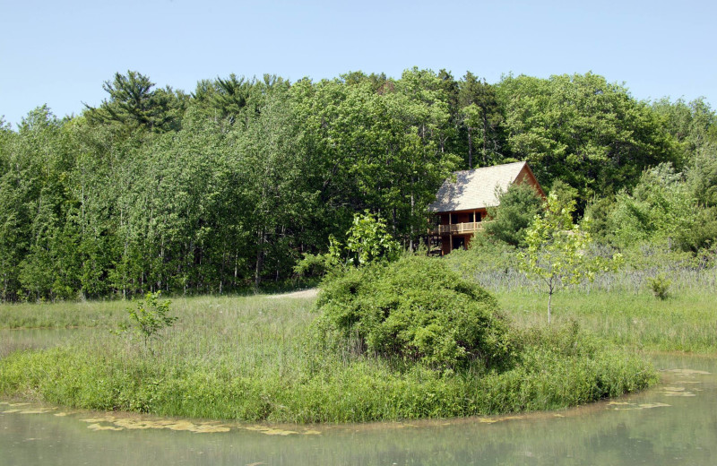 Cabin exterior at Chanticleer Guest House.
